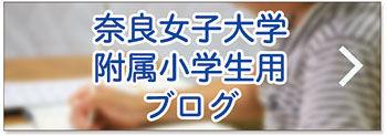 奈良女子大学附属小学生用ブログ